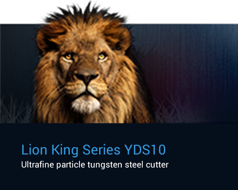 Lion King Series YDS 10